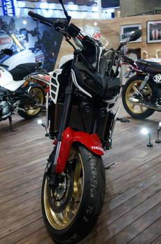 05 Yamaha MT-09 正面顔.JPG